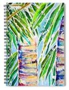 Kaimana Beach Spiral Notebook