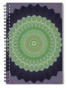 Kaleidoscope 4 Spiral Notebook