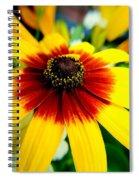 Kaleidoscope Bouquet Spiral Notebook