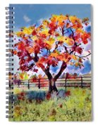 Kaleidoscope Of Colors Spiral Notebook
