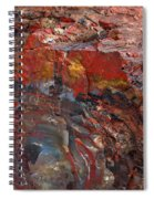 Kaleidoscope Of Colors Spiral Notebook