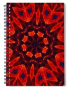 Kalidescope Abstract 031211 Spiral Notebook