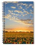 Kansas Sunflowers At Sunset Spiral Notebook