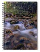 Katahdin Stream Spiral Notebook
