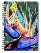 Kauai Bird Of Paradise Spiral Notebook
