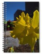Kayak Launch Daffodil Cambridge Ma Spiral Notebook