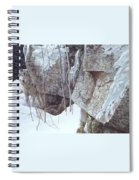 Kb Bateman Robert-silent Witness Robert Bateman Spiral Notebook