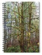 Keeping It Green Spiral Notebook