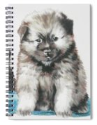 Keeshond Puppies Spiral Notebook