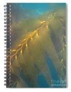 Kelp 2 Spiral Notebook