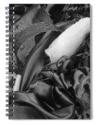 Kelp Point Lobos 8288 Spiral Notebook