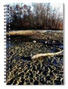 Kensington 4 Spiral Notebook