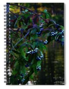 Kensington Spiral Notebook