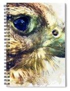 Kestrel Watercolor Painting Spiral Notebook
