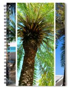 Key West Palm Triplets Spiral Notebook