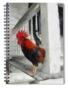 Key West Porch Rooster Spiral Notebook