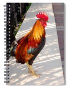 Key West Rooster Spiral Notebook