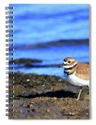 Killdeer . 40d4101 Spiral Notebook