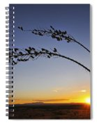 Killing Me Softly Spiral Notebook