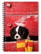 King Charles Cavalier Puppy  Spiral Notebook