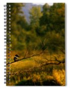 King Fisher Spiral Notebook