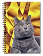 King Kitty With Golden Eyes Spiral Notebook