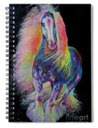 King Of Colours Spiral Notebook