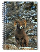 King Of The Canadian Rockies Spiral Notebook