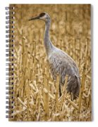 King Of The Delta Cornfield Spiral Notebook
