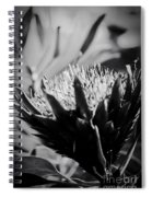 King Protea Exotic Tropical Flowers Spiral Notebook