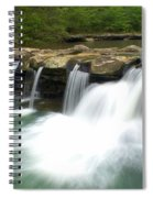 King River Falls Spiral Notebook