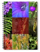 Kingdom Plantae Spiral Notebook