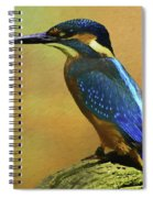 Kingfisher Perch Spiral Notebook