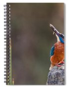 Kingfisher With Fish Spiral Notebook
