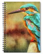 Kingfisher's Perch 2 Spiral Notebook
