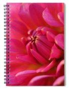 Kiss Of Pink Spiral Notebook