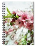 Kiss Of Spring Spiral Notebook