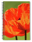 Kiss The Sun Spiral Notebook