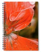 Kissed By The Rain Spiral Notebook