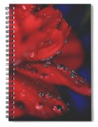 Kisses In The Rain Spiral Notebook
