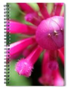 Kissing Flower Spiral Notebook