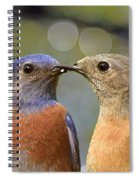 Kissy Face Closeup I Spiral Notebook