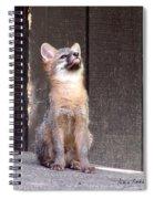 Kit Fox11 Spiral Notebook