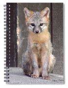 Kit Fox15 Spiral Notebook