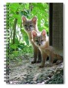 Kit Fox16 Spiral Notebook