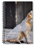 Kit Fox2 Spiral Notebook