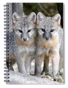 Kit Fox6 Spiral Notebook