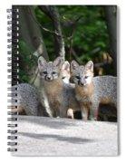 Kit Fox9 Spiral Notebook