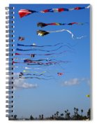 Kite Season Spiral Notebook
