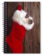 Kitten In Stocking Spiral Notebook